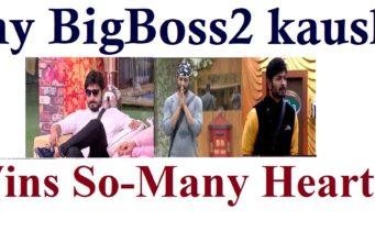 Why bigboss2 Telugu kaushal wins so-many hearts