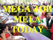 MEGA JOB mela companies list