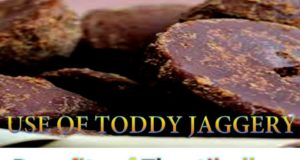 Benefits of Thaatibellam #jaggery