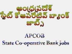 APCOB State Co-operative Bank Jobs