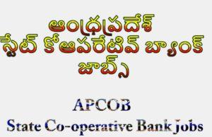 APCOB State Co-operative Bank Jobs