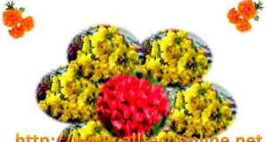 Types of Bathukammalu Atukulu Bathukamma