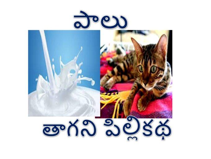 Stories Kathalu in Telugu