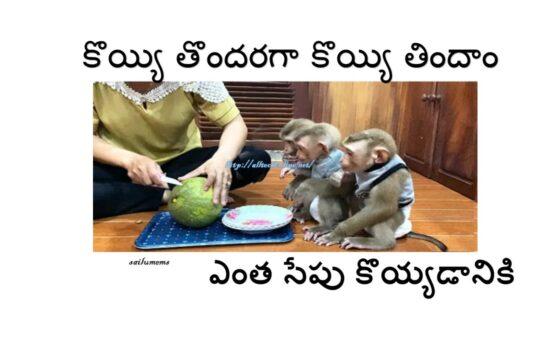 Everyone has Same Cravings for Food in Telugu